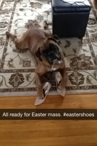 I just wanted him to look nice for Easter mass. He cleans up nicely,doesn't he?